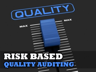 Risk Based Quality Auditing Lance Coleman Compliance Trainings