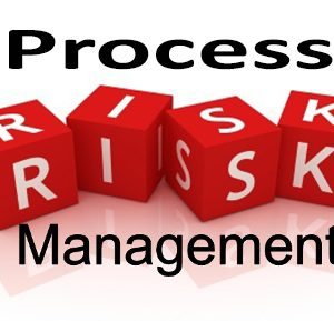 Process Risk Management Strategies Ronald Snee Compliance Trainings